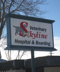 Skyline's sign in winter